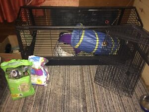Large Rabbit cage with playpen and accessories