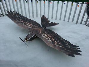 RC EPP Eagle with Brushless M, Speed C, Servos and 6ch Rx