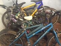 Job lot of bikes and wheels