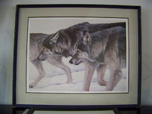 Limited Edition Timber Wolves Print