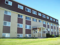 BACHELOR APARTMENT - Priestman St - Great Location!! Avail Sept