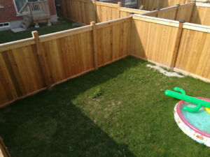 Fence, Deck, Landscaping and More. Free quotes!