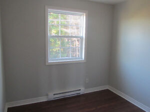 FOR SALE! Renovated Duplex in Center of City Near MUN! St. John's Newfoundland image 6