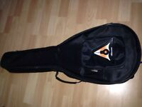 Baritone ukulele soft shell case