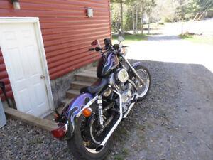 2000 Harley Davidson 883 Huggar style