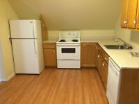 3 Bedroom Unit for Rent Downtown - 1st Month Rent 1/2 Off!!!