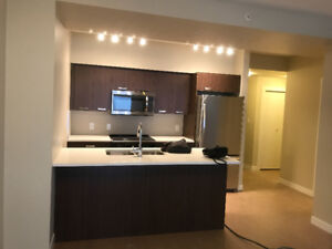 One Bedroom and Den Condo Downtown (Fox 2)