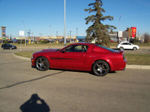 Ford Mustang GT/CS Low KM $18000 obo
