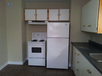 Two bedroom basement apartment for rent in Torbay