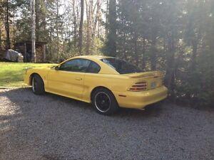 95 Mustang GT