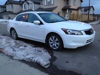 Honda Accord best condition that you can find.