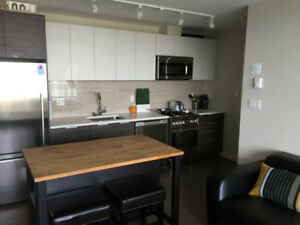 New Fully Furnished Luxury Condo - 2 Bd 2 Bth   Den - WAVE CONDO