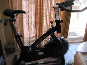 Velopro GS Stationary Bicycle