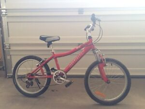 Infinity mountain bike in great condition