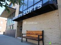 Gorgeous LOFT for Sale in Downtown Edmonton!