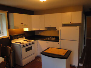 Spacious apartment in St. Philip's-high speed internet included