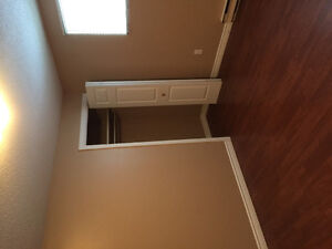 1 Bedroom Basement Apt in a quiet east End location