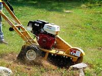 Dessouchage - Stump Grinding / Removal