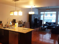 1 BEDROOM LOFT STYLE CONDO - DOWNTOWN - ONE MONTH FREE RENT