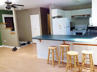 Downtown Home 981 sf, 2 bed, 2 bath, Pets OK N/S Avail August 1