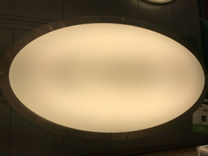 Large Ceiling light 3' x 1 1/2'  each $75 have 3 of them