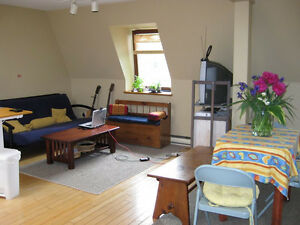 2 month sublet in downtown Montreal (McGill Ghetto)