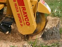 Tree stump grinding/removal