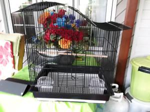 Cage d' oiseaux