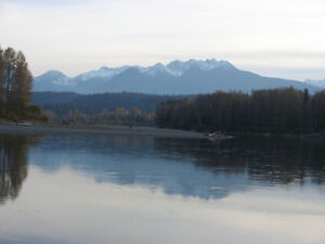 Beautiful Timbered Acreage on the Fraser  West of McBride,BC