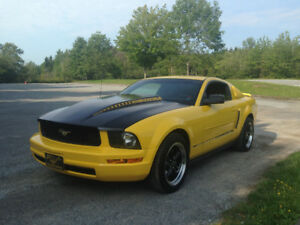 2005 Mustang 4.0L Coupe for Sale (Reduced)