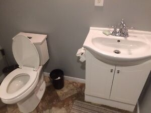 Large and Very Bright One Bedroom Apartment  Peterborough Peterborough Area image 6