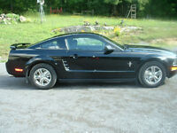 GIVING AWAY at this price 2005 Ford Mustang Coupe