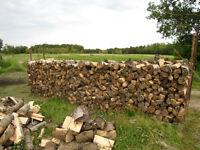 bois de chauffage bois de foyer