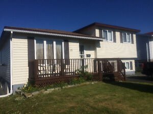 REDUCED!! 33 Frobisher Ave, Mt Pearl St. John's Newfoundland image 1