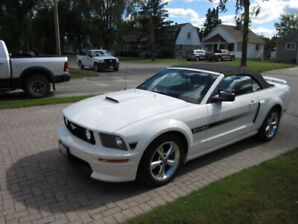 2008 Ford Mustang GT Convertible