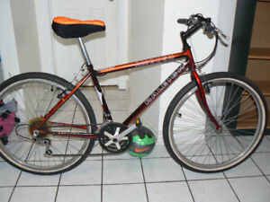 Excellent Large Raleigh Bike- Upto 5 Ft 10 Inch- Made in Canada