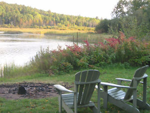Great Waterfront -3 Acres- Unspoiled Forest
