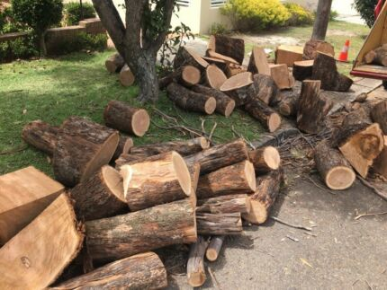 Firewood free for pick up
