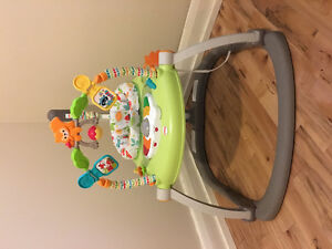 Fisher Price Jumperoo-Like New!
