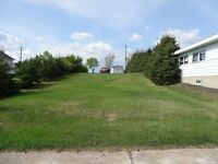 $10,500 RESIDENTIAL LOT - SMALL TOWN LIVING - ALBERTA