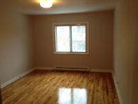Grand appartement lumineux 3 1/2- CDN Montreal Large bright 31/2