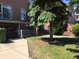 Big 3 1/2 Condo + 2 extra small rooms on Thierry St. in Lasalle