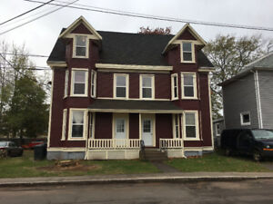 NEWLY RENOVATED COZY 1 BEDROOM APARTMENT CLOSE TO DOWNTOWN