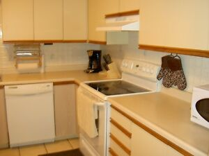 1 BDRM Furnished. INCL: AC, WIFI, CABLE, HYDRO and laundry