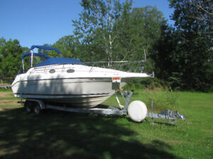 1997 SeaRay 250 Sundancer