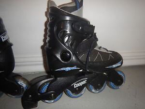 roller blades/patin a roues alignees