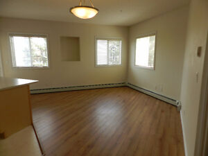 FREE UTILITIES FOR 1ST MONTH - 2 Bdr Downtown Condo