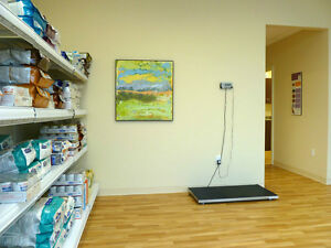 Veterinary Services - Vet Clinic in Edmonton Edmonton Edmonton Area image 5