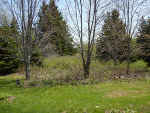 25 ORGANIC ACRES WITH POND AND HOMESITE