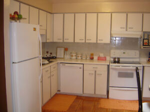 Lovely and Spacious Back Split Semi Detached House for Sale Kitchener / Waterloo Kitchener Area image 9
